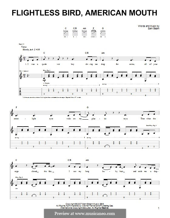 Flightless Bird American Mouth On Piano 19