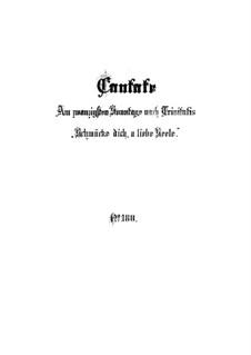 Schmücke dich, o liebe Seele, BWV 180: Full score by Johann Sebastian Bach