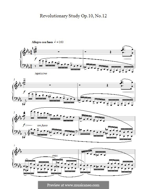 No.12 in C Minor: For piano (high quality sheet music) by Frédéric Chopin
