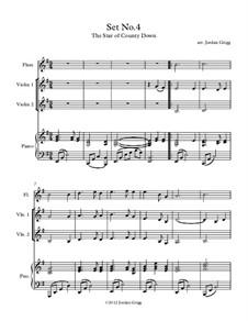 Fiddle Set No.4: Fiddle Set No.4 by folklore