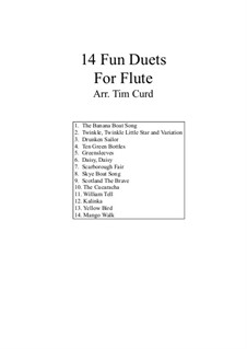 14 Fun Duets: For two flutes by folklore