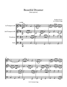 Beautiful Dreamer: For brass quartet by Stephen Collins Foster