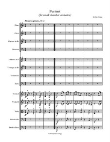 Furiant (for small chamber orchestra): Furiant (for small chamber orchestra) by Jordan Grigg