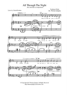 All Through the Night: For alto with piano accompaniment by folklore