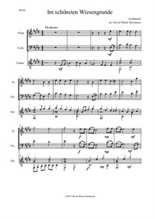 Five German Folk Songs for Two Voices and Guitar: Im schönsten Wiesengrunde, for flute, cello and guitar by folklore