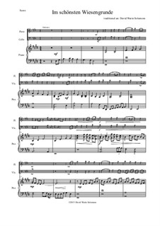 Five German Folk Songs for Two Voices and Guitar: Im schönsten Wiesengrunde, for flute, cello and piano by folklore