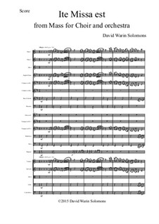 Ite Missa Est for orchestra: Score and parts by David W Solomons