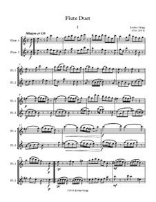 Flute Duet: Flute Duet by Jordan Grigg