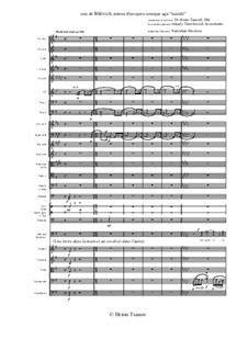 Suicide. Opera comique: Aria de Bilevich by Hristo Tsanov