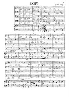 Könnt ich, schön reines werthes Weib: Könnt ich, schön reines werthes Weib by Ludwig Senfl
