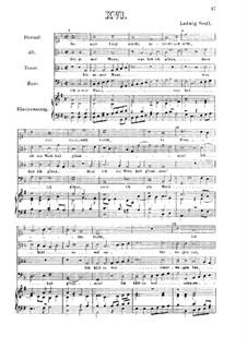 So man lang macht, betracht und acht : Für vier Stimmen und Klavier by Ludwig Senfl