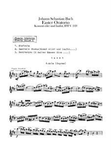 Easter Oratorio, BWV 249: Flutes I, II parts by Johann Sebastian Bach