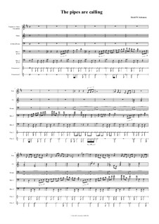 The pipes are calling: For octet by David W Solomons