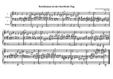 Erschienen ist der herrliche Tag, BWV 629: Erschienen ist der herrliche Tag by Johann Sebastian Bach