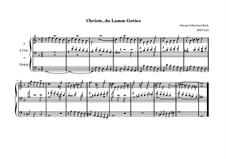 Christe, du Lamm Gottes, BWV 619: Christe, du Lamm Gottes by Johann Sebastian Bach