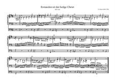 Erstanden ist der heil'ge Christ, BWV 628: Erstanden ist der heil'ge Christ by Johann Sebastian Bach