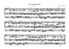 Jesu, meine Freude, BWV 610: For organ by Johann Sebastian Bach