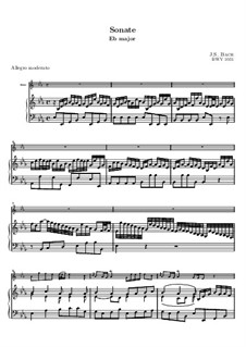 Sonata for Flute and Harpsichord No.2 in E Flat Major, BWV 1031: Score by Johann Sebastian Bach