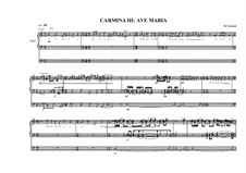 Work for Organ No.3 'Ave Maria', MVWV 296: Work for Organ No.3 'Ave Maria' by Maurice Verheul