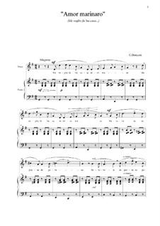 Me voglio fa 'na casa: G-Dur by Gaetano Donizetti