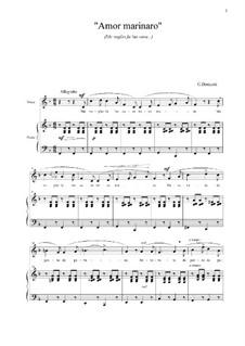 Me voglio fa 'na casa: F-Dur by Gaetano Donizetti