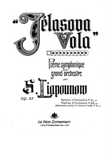 Symphonic Poem in Memory of Chopin 'Zhelazova Vola', Op.37: For two pianos by Sergei Lyapunov