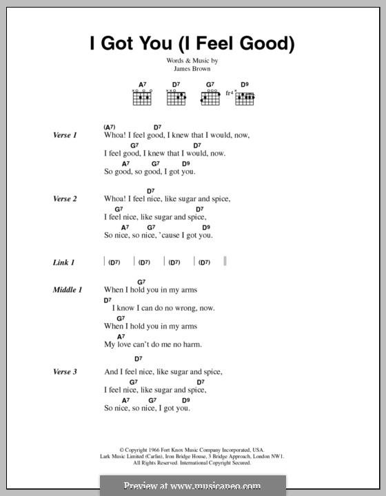I Got You (I Feel Good): Lyrics and chords by James Brown