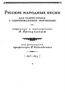 Sixty-five Russian Folk Songs: Sixty-five Russian Folk Songs by Vasily Prokunin