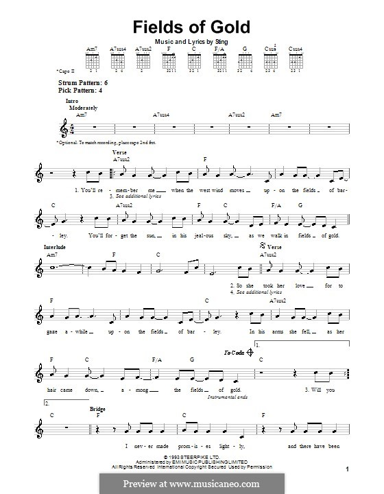 Fields of Gold by Sting - sheet music on MusicaNeo