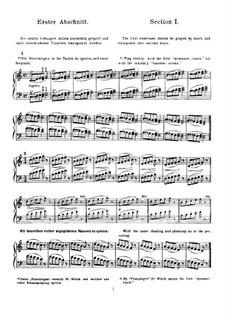 Piano Studies: Piano Studies by Friedrich Wieck