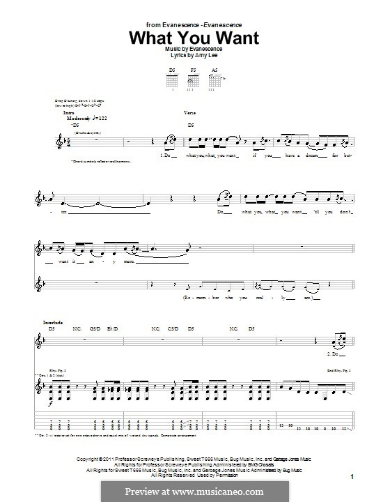 What You Want (Evanescence): For guitar with tab by Amy Lee