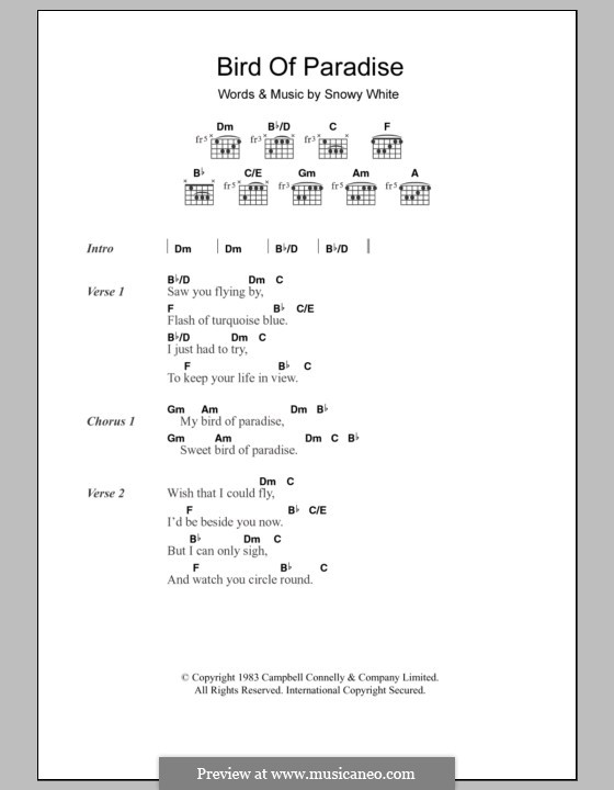 Bird of Paradise: Lyrics and chords by Snowy White