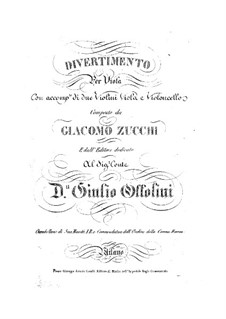 Divertissement for Viola and Strings: Divertissement for Viola and Strings by Giacomo Zucchi