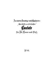 Jesus schläft, was soll ich hoffen?, BWV 81: Full score by Johann Sebastian Bach