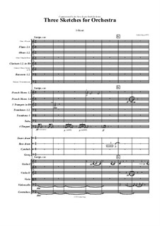 3 sketches for orchestra: 3 sketches for orchestra by Jordan Grigg