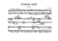 Studium XXIII for piano: Studium XXIII for piano by Peter Petrof