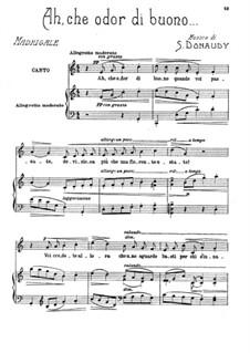 Volume III: Ah, che odor di buono by Stefano Donaudy