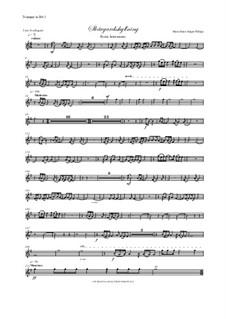 Skargardsshyllning: Trumpet I-III parts by Hans-Jürgen Philipp