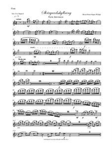 Skargardsshyllning: Flute Part by Hans-Jürgen Philipp