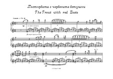 Ghost from the Viennese Forest - 6 comments for piano: The Trout with red Boots by Peter Petrof