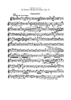 V přírodě (In Nature's Realm), B.168 Op.91: Clarinets parts by Antonín Dvořák