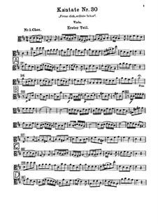 Freue dich, erlöste Schar (Rejoice, Redeemed Host), BWV 30: Viola part by Johann Sebastian Bach