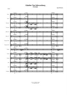 Günther von Schwarzburg: Overture, for chamber orchestra by Ignaz Holzbauer