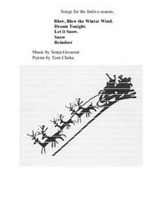 Songs for the festive season: Songs for the festive season by Sonja Grossner