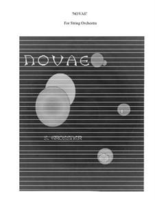 Novae: Novae by Sonja Grossner