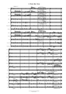 Sweet 4 Chamber Orchestra: 3. Pretty How Town by David W Solomons