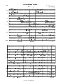 Sweet 4 Chamber Orchestra: All movements by David W Solomons