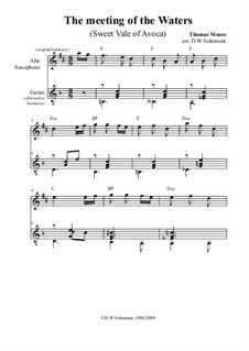 The meeting of the waters: For alto saxophone and guitar by Thomas Moore