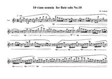 10 viam somnia for flute solo: No.10, MVWV 529 by Maurice Verheul