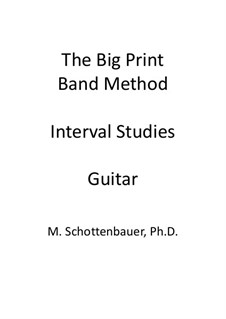 Interval Studies: Guitar by Michele Schottenbauer